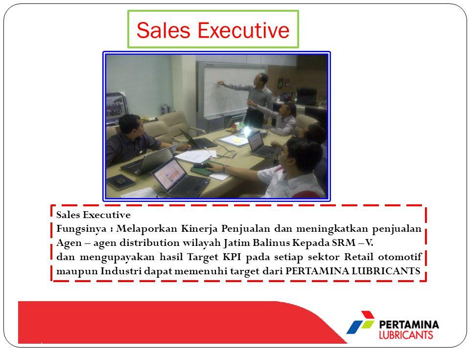 Sales Executive Sales Executive