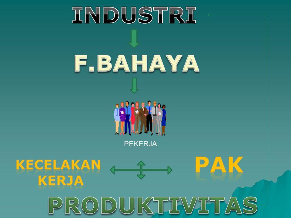 INDUSTRI F.BAHAYA PAK PRODUKTIVITAS