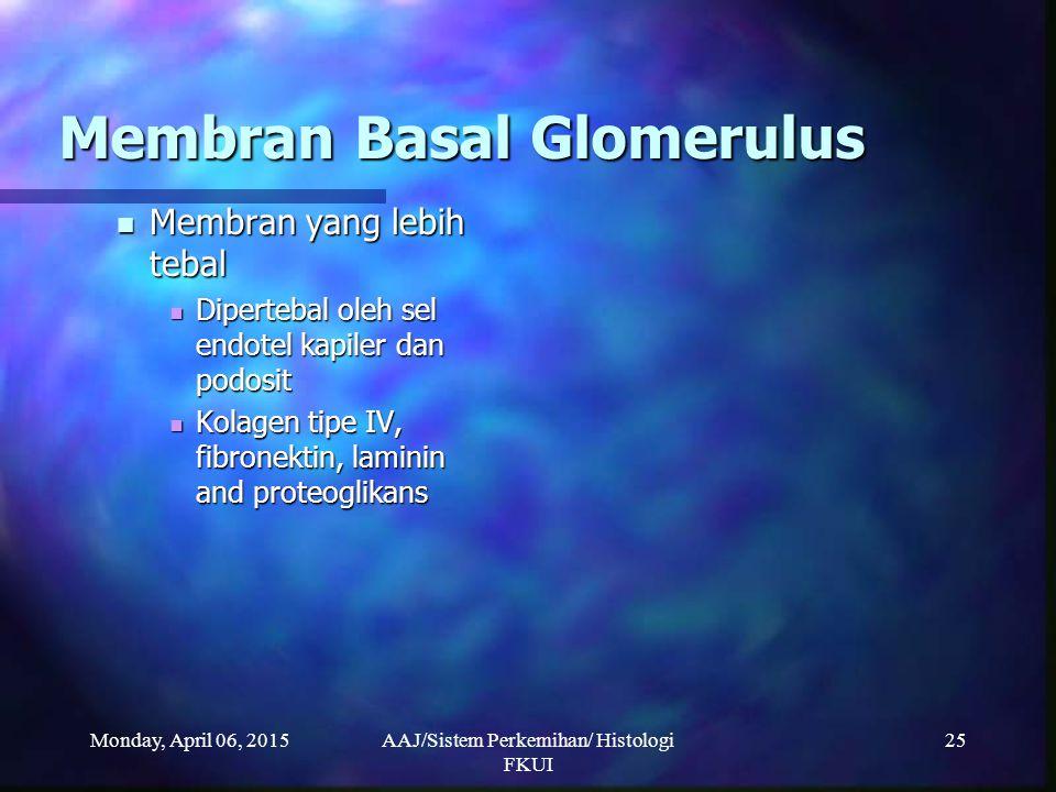Membran Basal Glomerulus