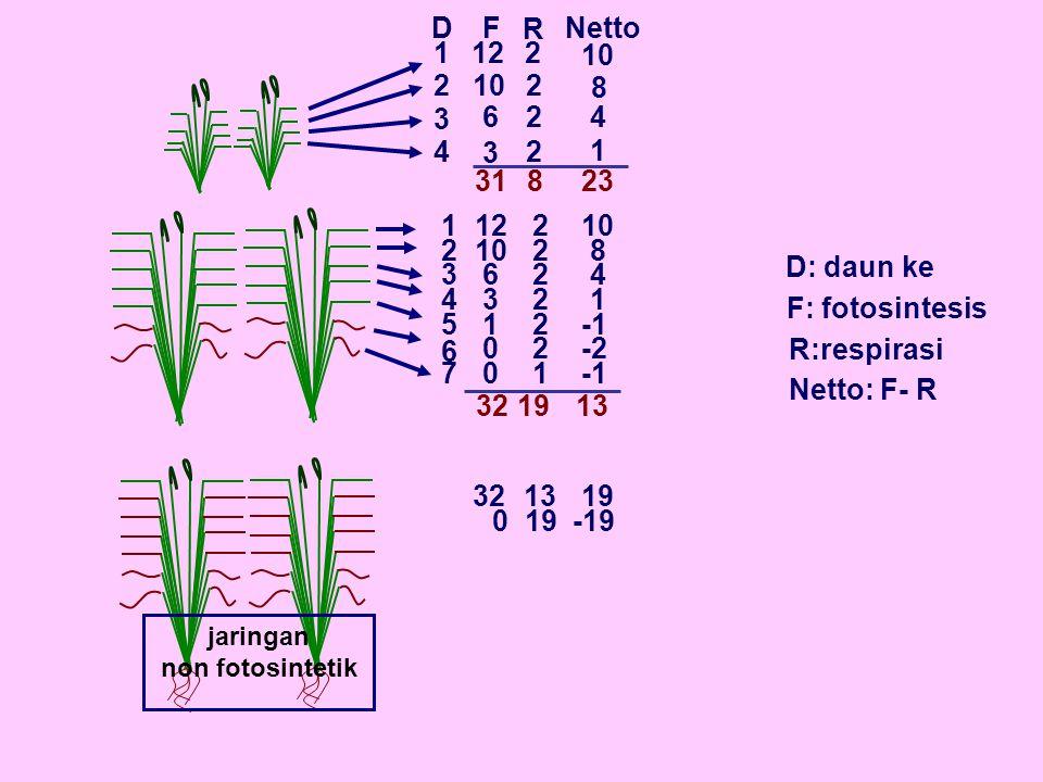 D F. R. Netto. 1. 12. 2. 10. 2. 10. 2. 8. 3. 6. 2. 4. 4. 3. 2. 1. 31. 8. 23. 1.