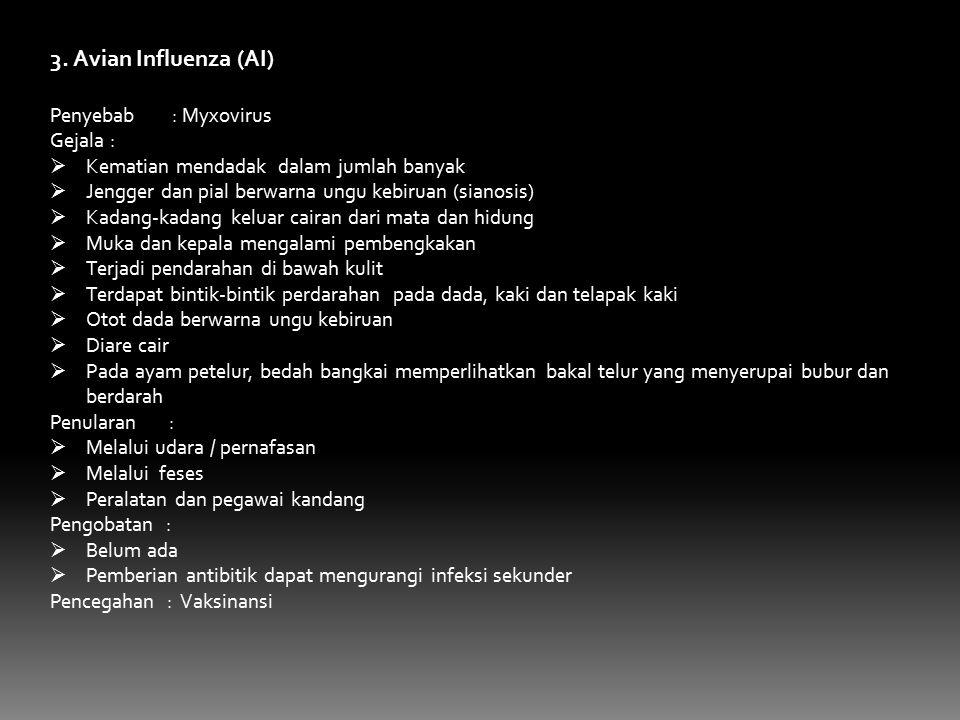3. Avian Influenza (AI) Penyebab : Myxovirus Gejala :