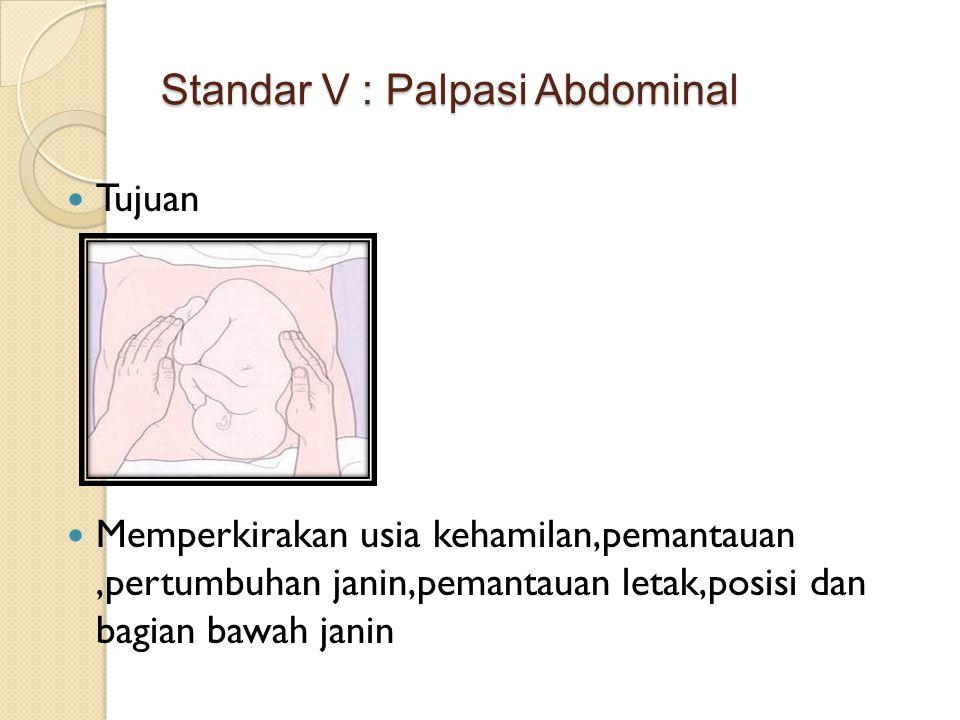 Standar V : Palpasi Abdominal
