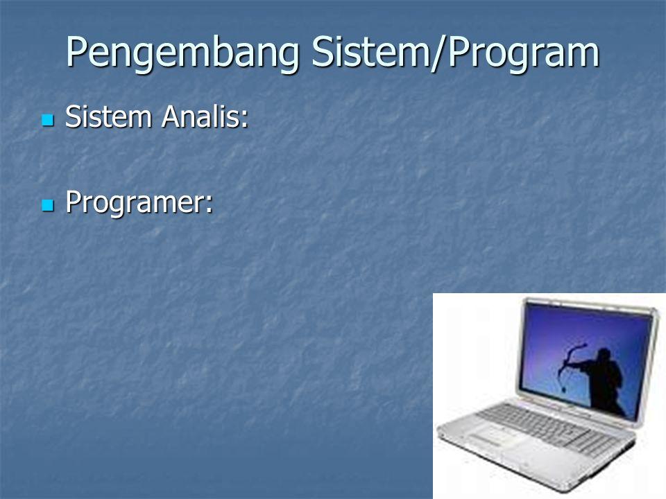 Pengembang Sistem/Program