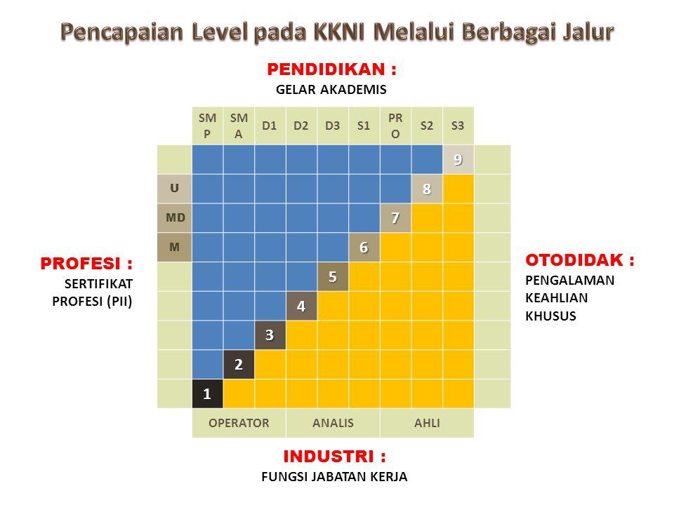Pencapaian Level pada KKNI Melalui Berbagai Jalur