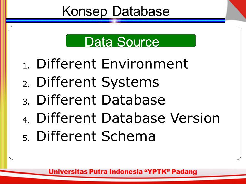 Konsep Database Data Source. Different Environment. Different Systems. Different Database. Different Database Version.
