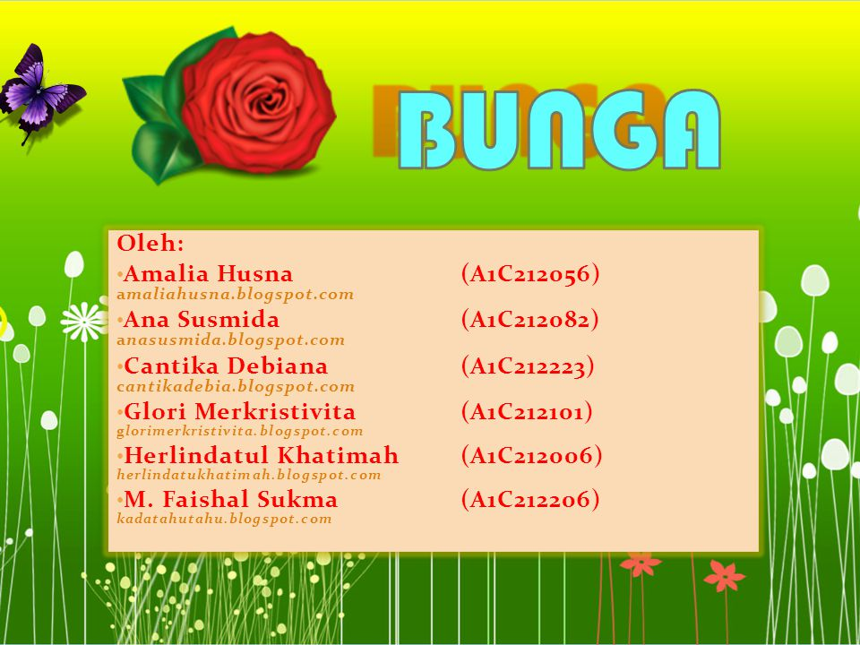 BUNGA Oleh: Amalia Husna (A1C212056) amaliahusna.blogspot.com