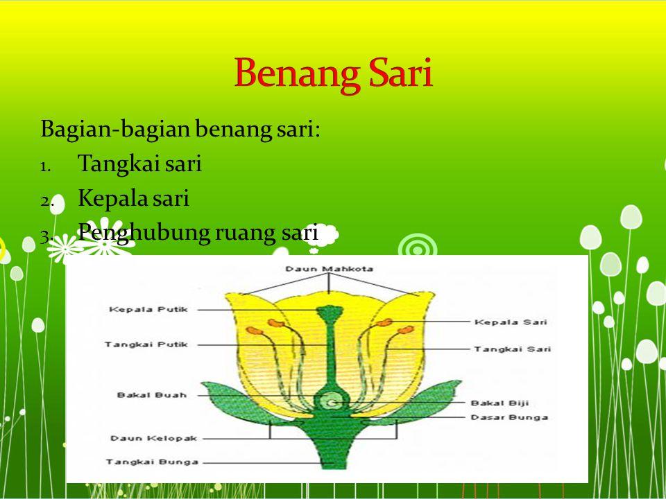 Benang Sari Bagian-bagian benang sari: Tangkai sari Kepala sari