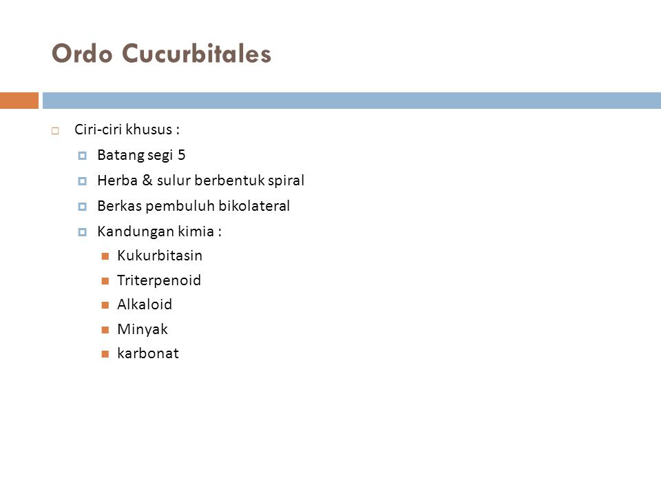 Ordo Cucurbitales Ciri-ciri khusus : Batang segi 5