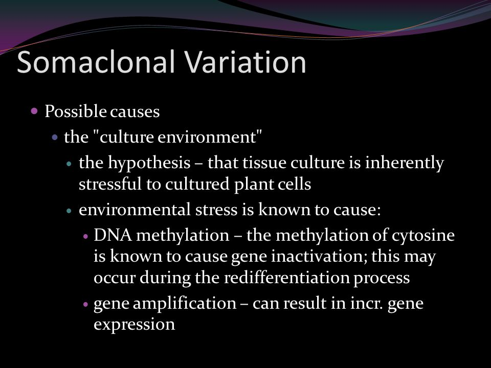 Somaclonal Variation Possible causes the culture environment