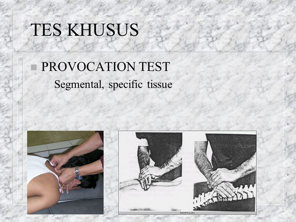 TES KHUSUS PROVOCATION TEST Segmental, specific tissue