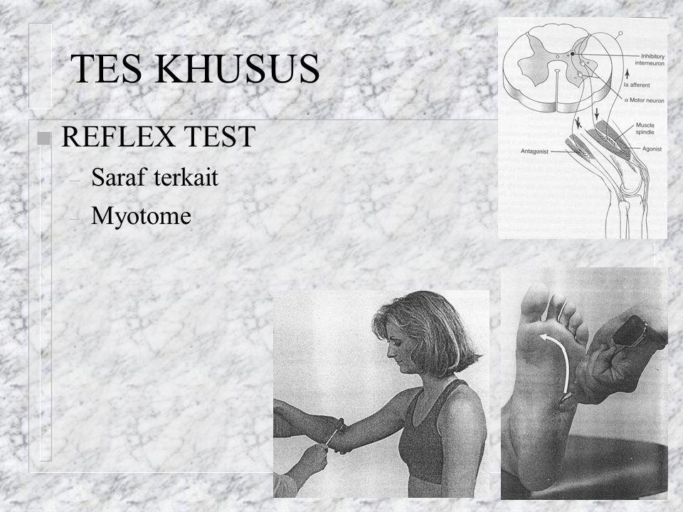 TES KHUSUS REFLEX TEST Saraf terkait Myotome