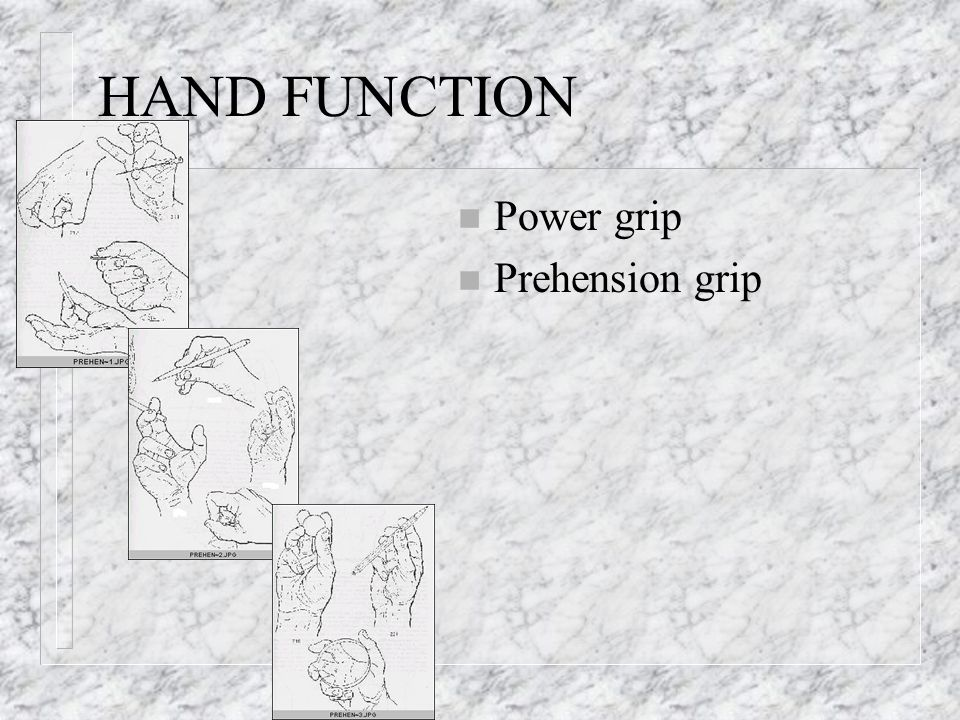 HAND FUNCTION Power grip Prehension grip