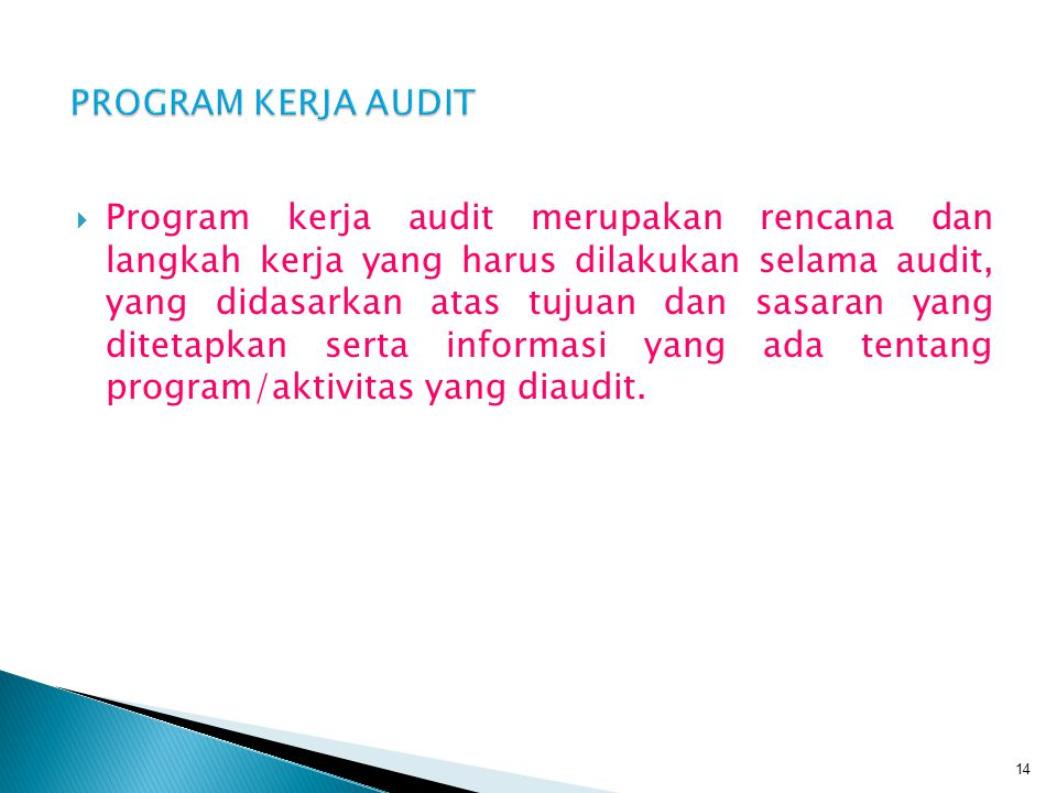 PROGRAM KERJA AUDIT