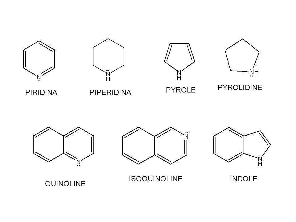 PYROLIDINE PYROLE PIRIDINA PIPERIDINA ISOQUINOLINE INDOLE QUINOLINE