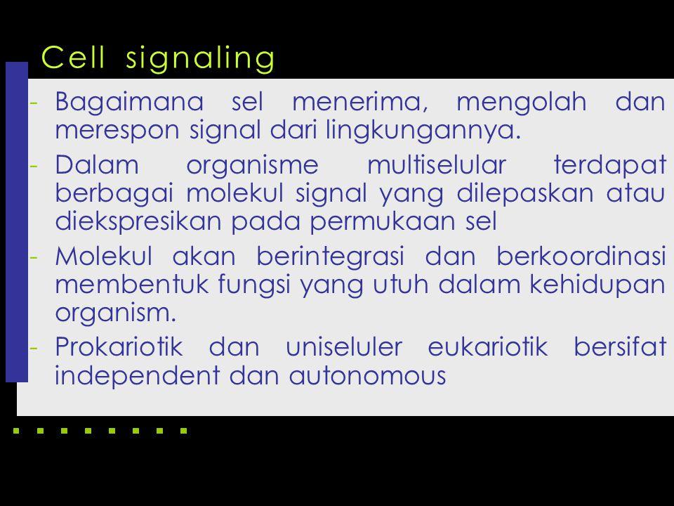 Cell signaling Bagaimana sel menerima, mengolah dan merespon signal dari lingkungannya.
