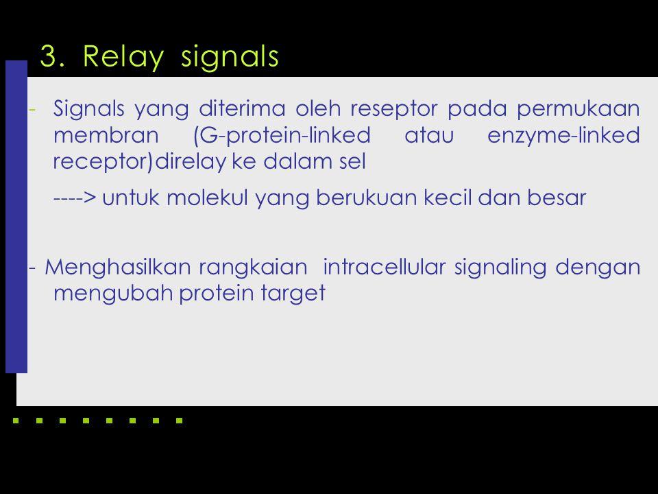 3. Relay signals ----> untuk molekul yang berukuan kecil dan besar