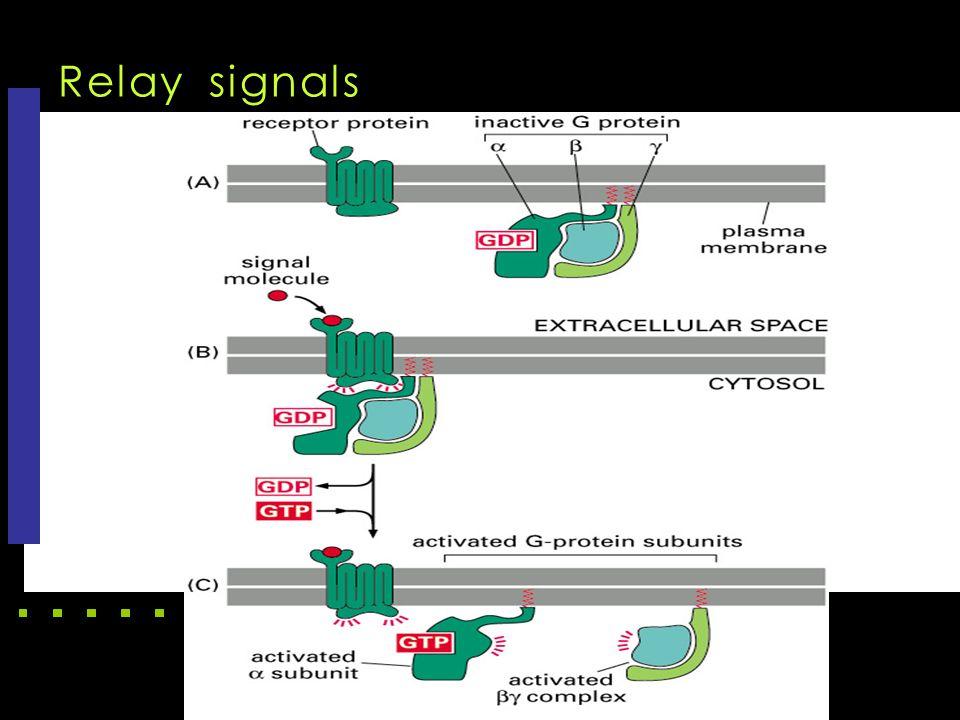 Relay signals