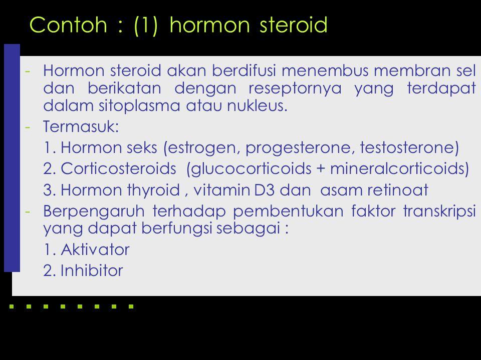 Contoh : (1) hormon steroid