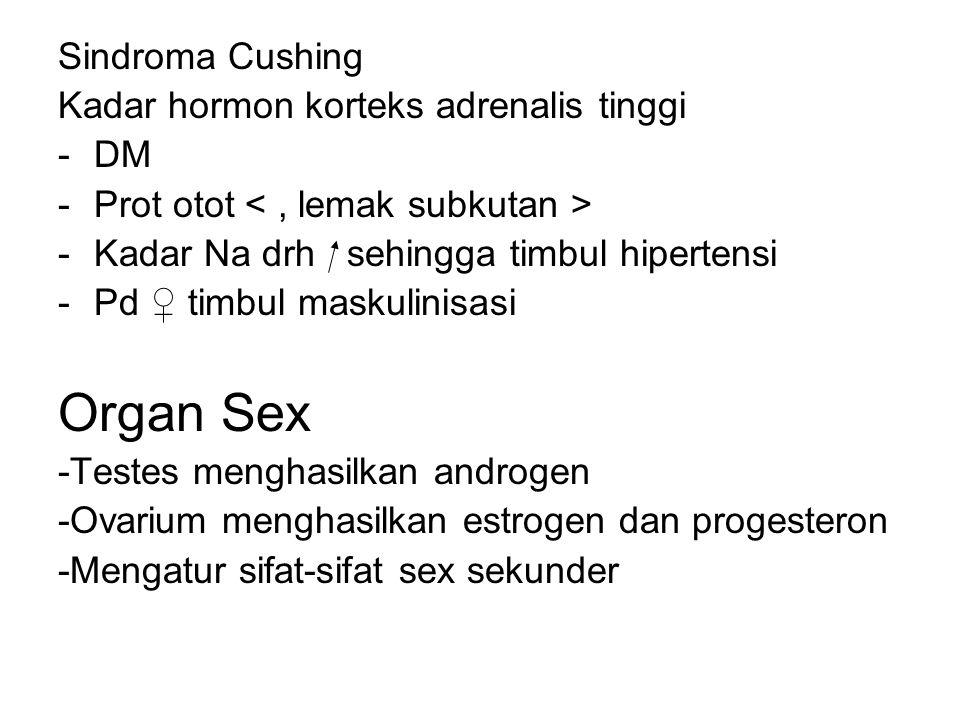 Organ Sex Sindroma Cushing Kadar hormon korteks adrenalis tinggi DM