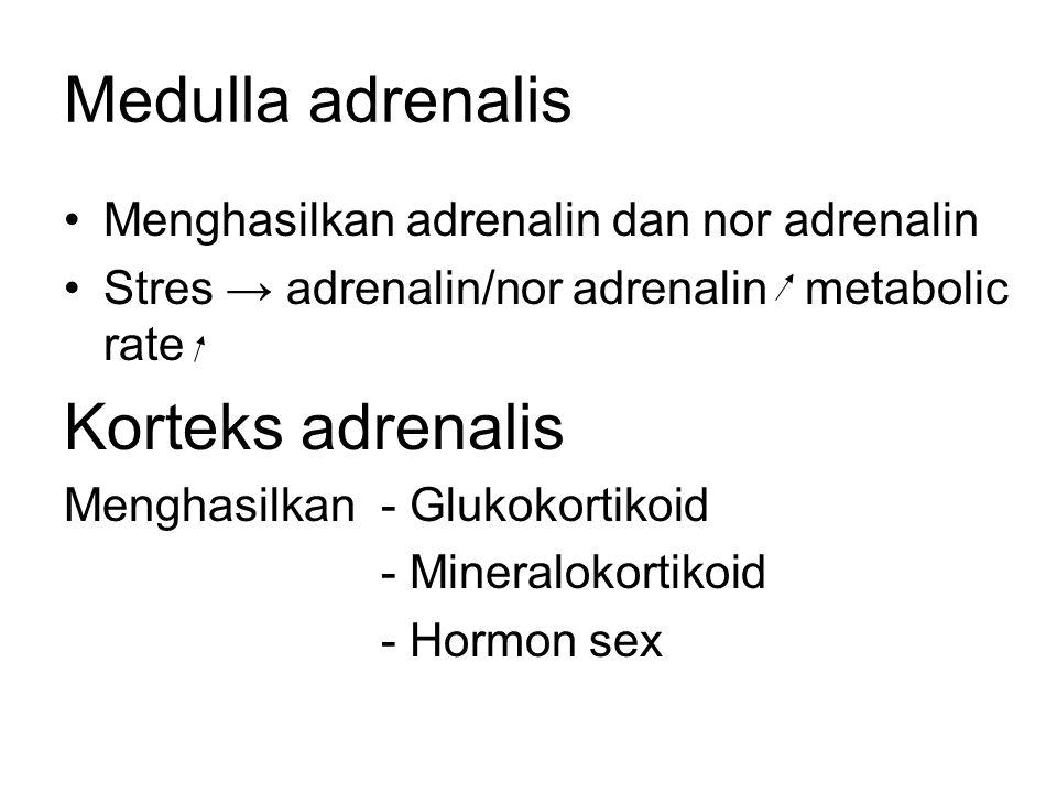 Medulla adrenalis Korteks adrenalis