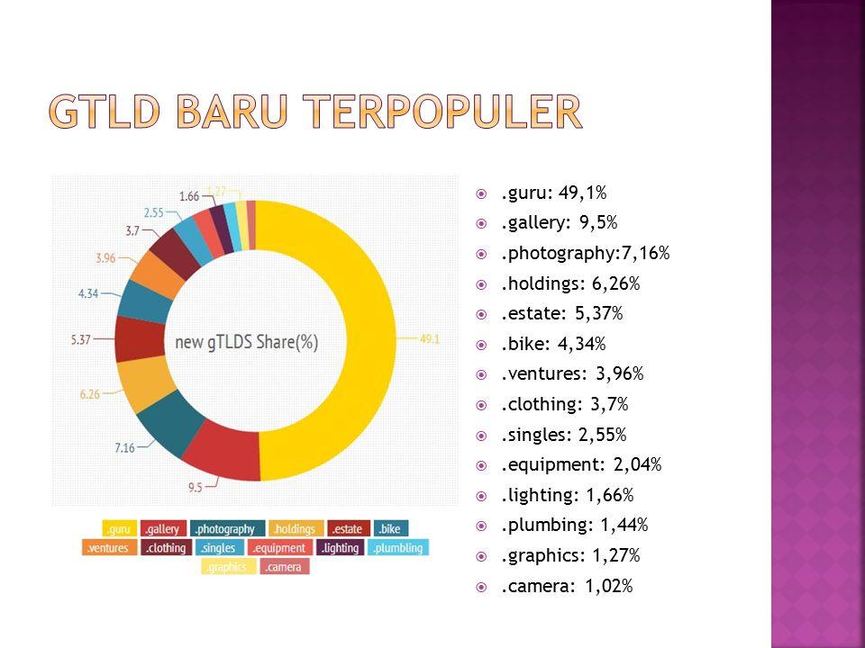 Gtld baru terpopuler .guru: 49,1% .gallery: 9,5% .photography:7,16%