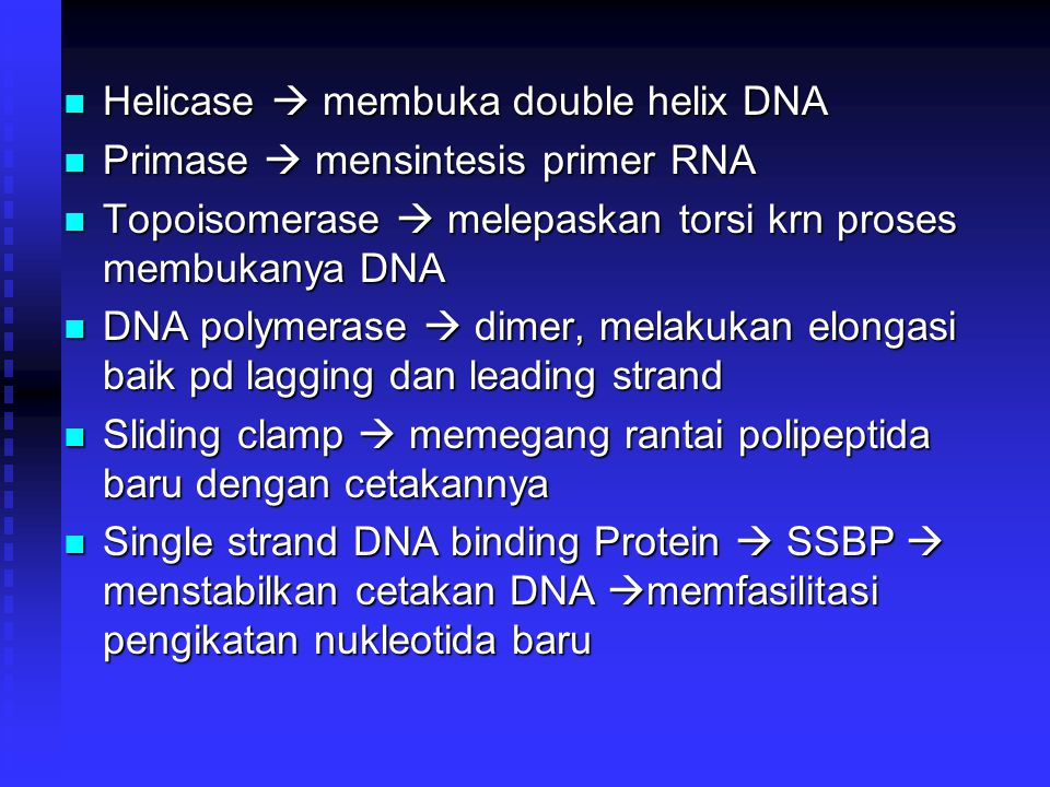 Helicase  membuka double helix DNA