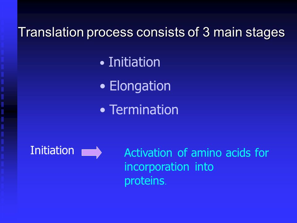 Translation process consists of 3 main stages