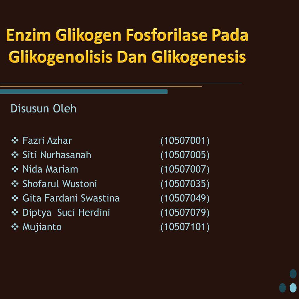 Enzim Glikogen Fosforilase Pada Glikogenolisis Dan Glikogenesis