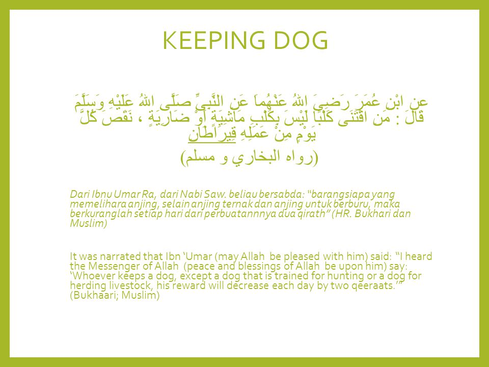 KEEPING DOG