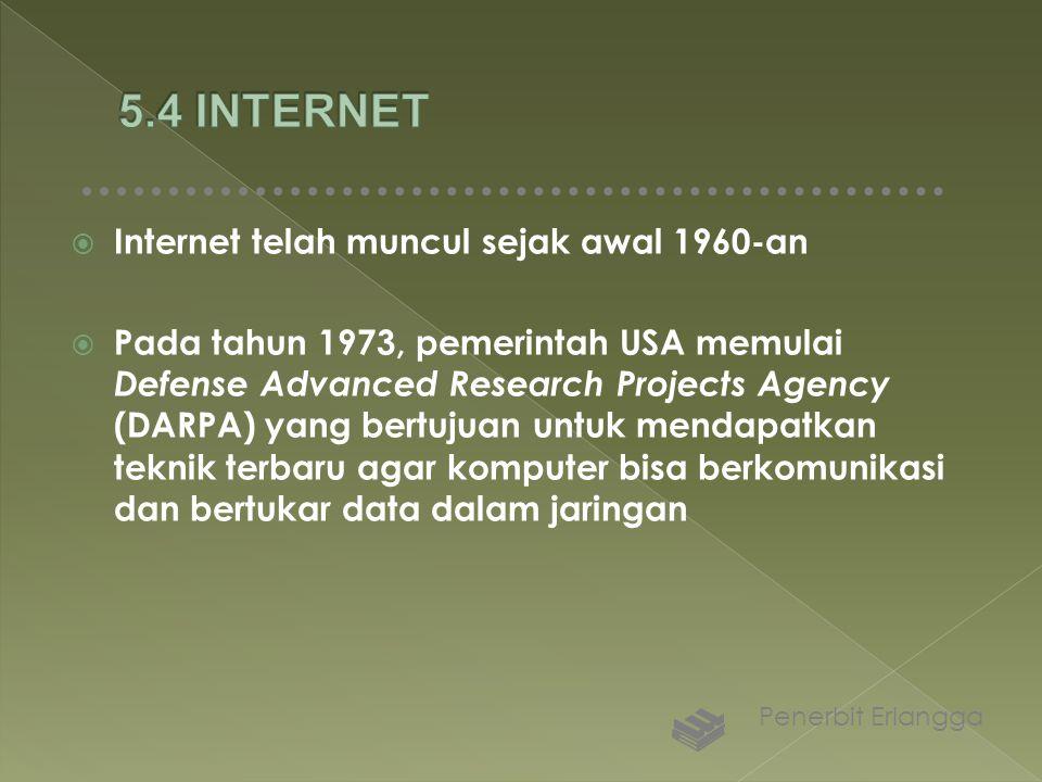 5.4 INTERNET Internet telah muncul sejak awal 1960-an