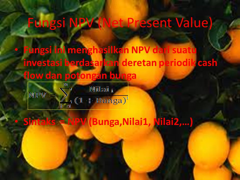 Fungsi NPV (Net Present Value)