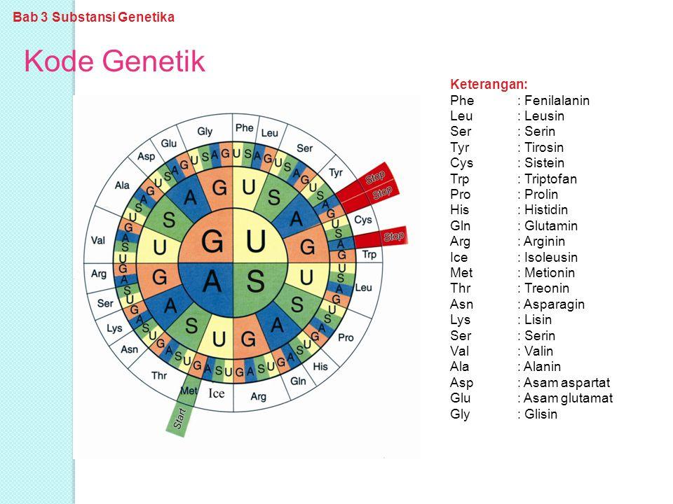 Kode Genetik Bab 3 Substansi Genetika Keterangan: Phe : Fenilalanin