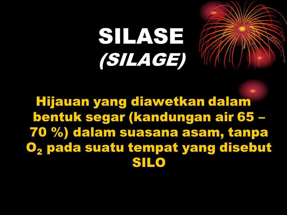 SILASE (SILAGE) Hijauan yang diawetkan dalam bentuk segar (kandungan air 65 – 70 %) dalam suasana asam, tanpa O2 pada suatu tempat yang disebut SILO.