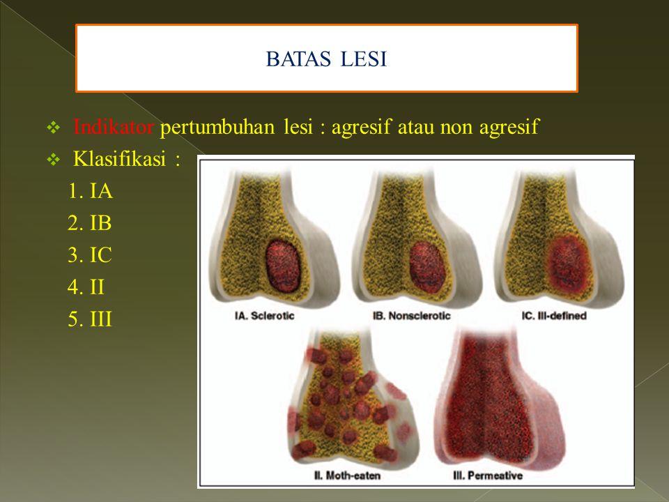 BATAS LESI Indikator pertumbuhan lesi : agresif atau non agresif. Klasifikasi : 1. IA. 2. IB. 3. IC.