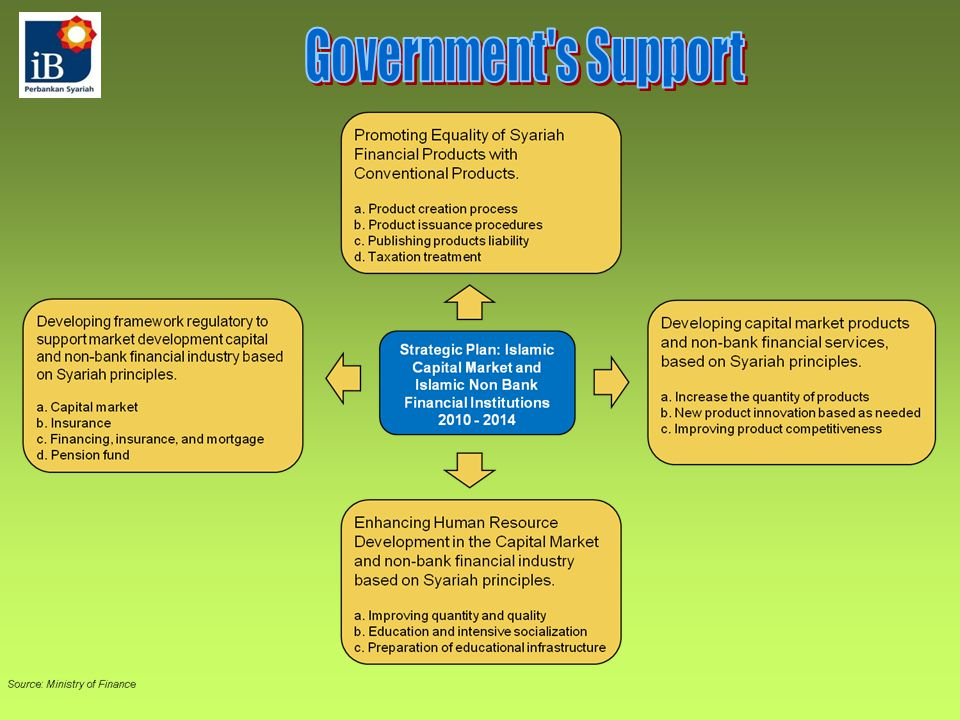 Government s Support