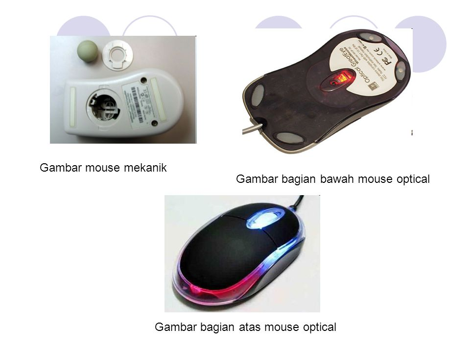 Gambar mouse mekanik Gambar bagian bawah mouse optical Gambar bagian atas mouse optical