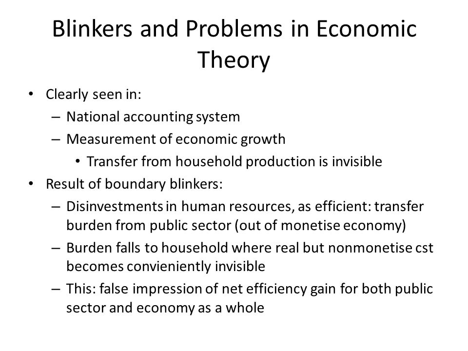 Blinkers and Problems in Economic Theory