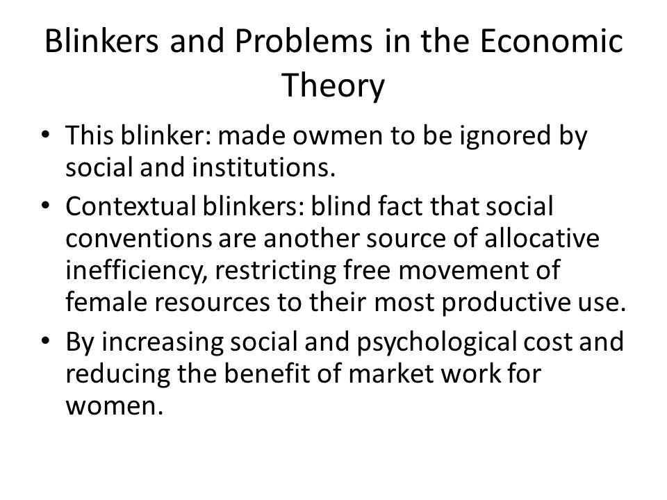 Blinkers and Problems in the Economic Theory