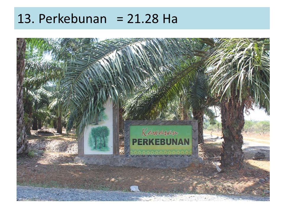 13. Perkebunan = 21.28 Ha