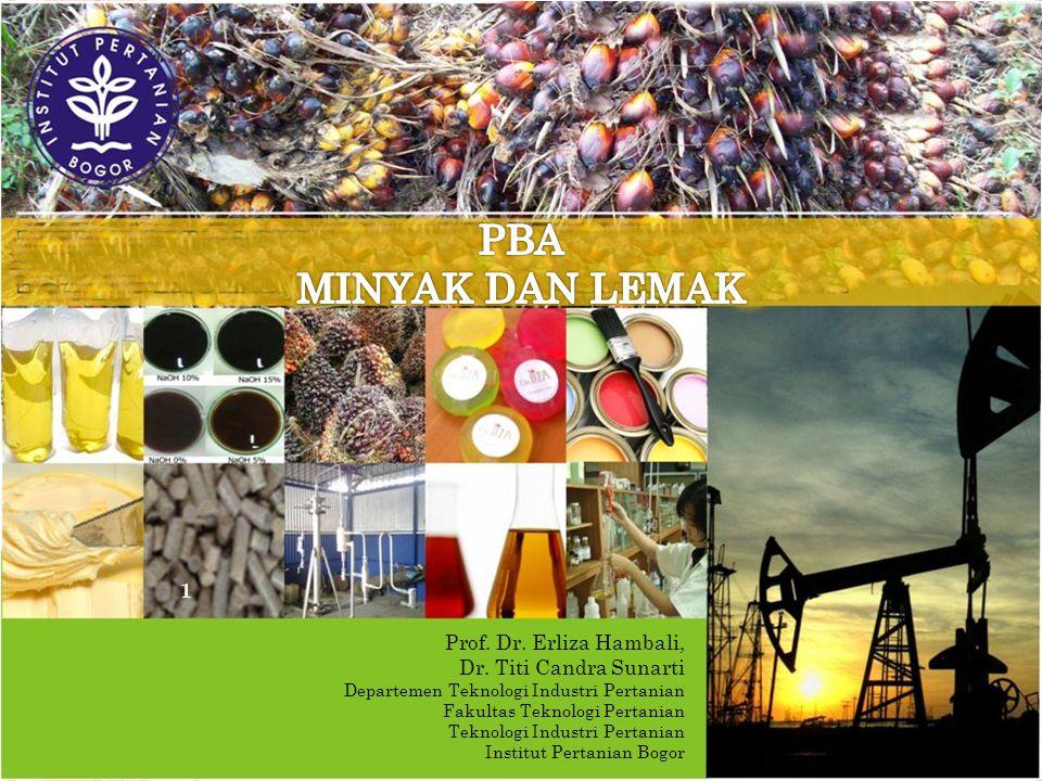 PBA MINYAK DAN LEMAK Prof. Dr. Erliza Hambali, Dr. Titi Candra Sunarti