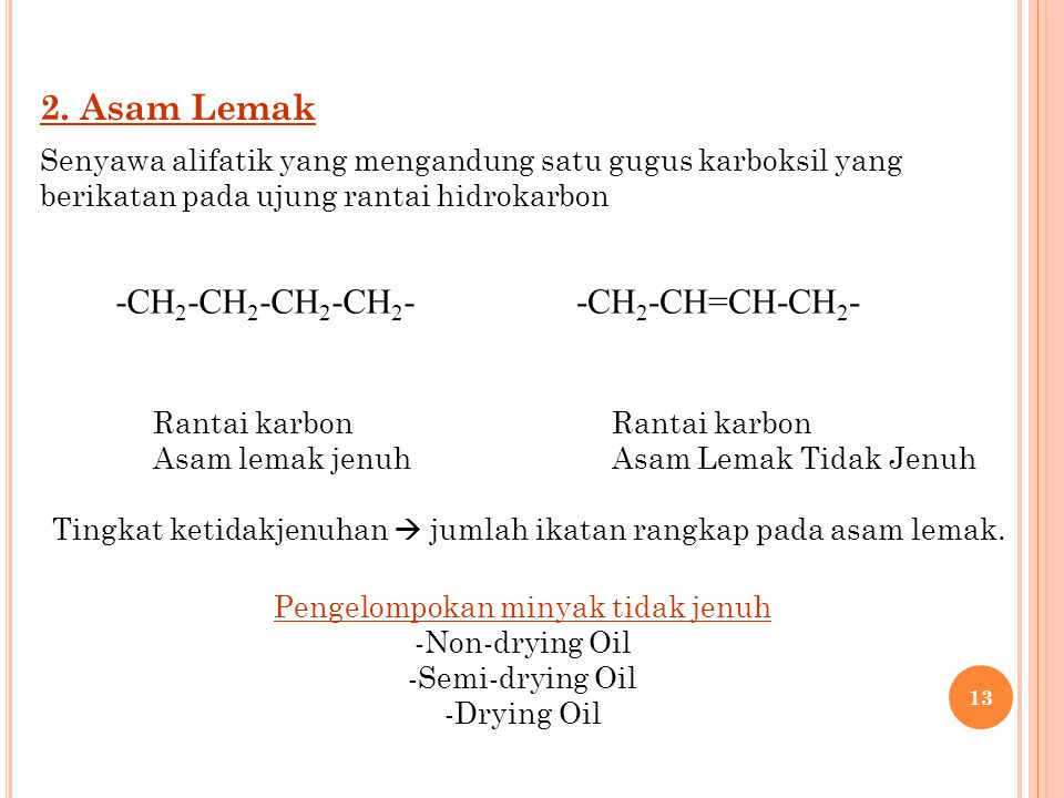 2. Asam Lemak -CH2-CH2-CH2-CH2- -CH2-CH=CH-CH2-