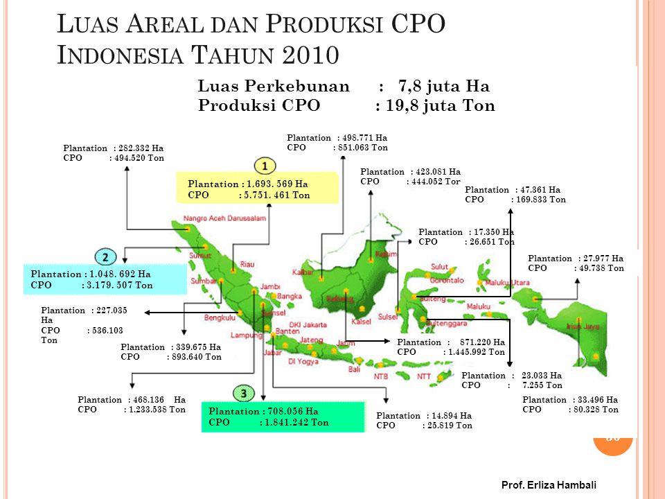 Luas Areal dan Produksi CPO Indonesia Tahun 2010