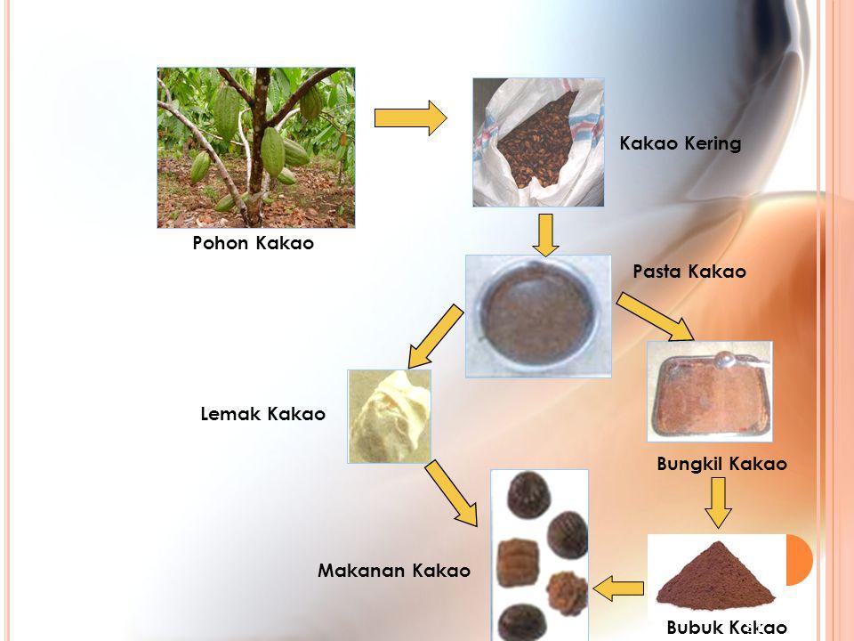 Kakao Kering Pohon Kakao Pasta Kakao Lemak Kakao Bungkil Kakao Makanan Kakao Bubuk Kakao