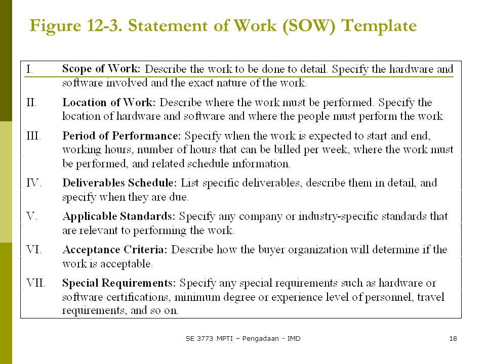 Figure 12-3. Statement of Work (SOW) Template