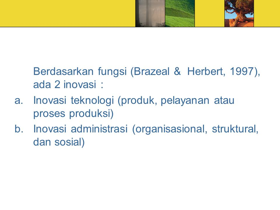 Berdasarkan fungsi (Brazeal & Herbert, 1997), ada 2 inovasi :