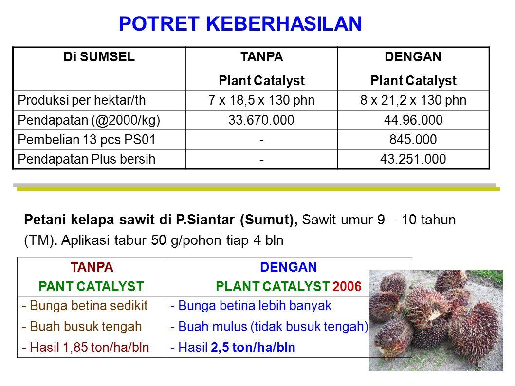 POTRET KEBERHASILAN Di SUMSEL. TANPA. Plant Catalyst. DENGAN. Produksi per hektar/th. 7 x 18,5 x 130 phn.