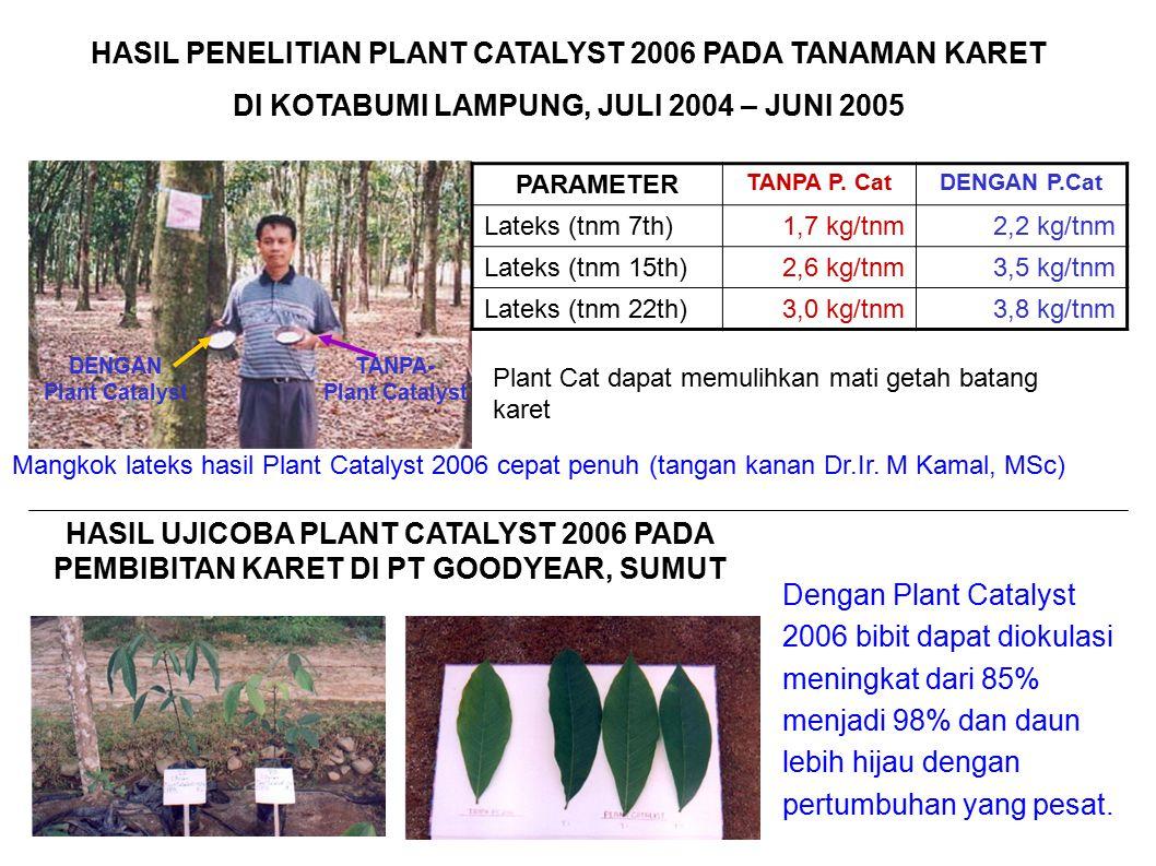 HASIL PENELITIAN PLANT CATALYST 2006 PADA TANAMAN KARET