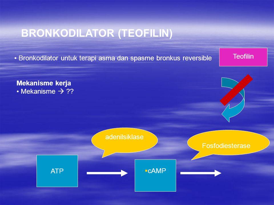 BRONKODILATOR (TEOFILIN)