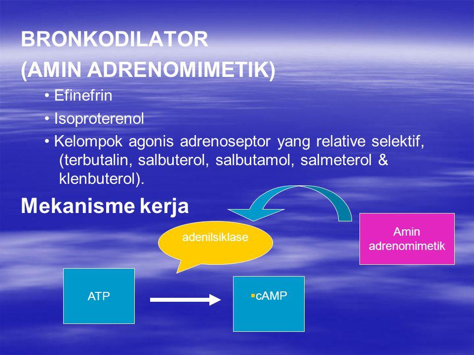 BRONKODILATOR (AMIN ADRENOMIMETIK) Mekanisme kerja • Efinefrin