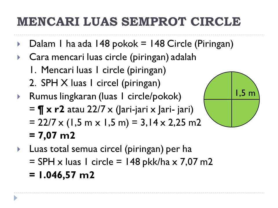 MENCARI LUAS SEMPROT CIRCLE
